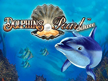 Dolphin's Pearl Deluxe на зеркале